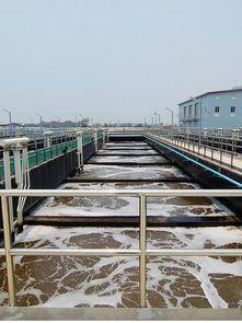 污水脱水一般在什么条件下可以投加药剂,长期接触污水处理的人员都应该知道,每一种药剂都有其最适宜的pH值范围,只有在这个范围内使用时,处理效率可发挥到最大。